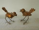 2-vogeltjes_0