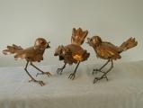 3-vogeltjes_0