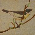 vogel-13