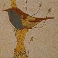 vogel-14