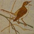 vogel-15