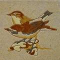 vogel-16