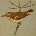 vogel-3