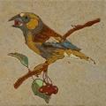 vogel-4