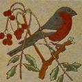 vogel-8