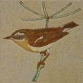 vogel-9