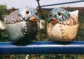 vogels-ijzer-kl